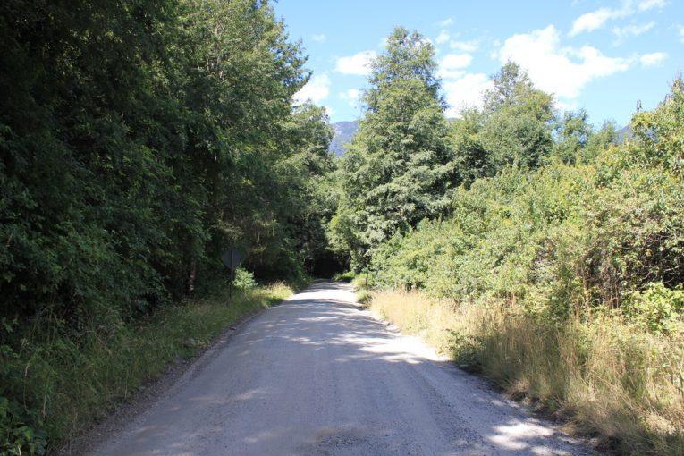 Camino de acceso a la propiedad