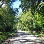 Camino de acceso al Fundo Magallanes