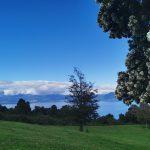 Vista desde el campo