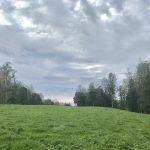 Pampas y bosques del fundo