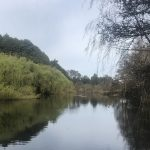 Laguna dentro de la propiedad