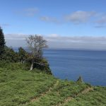 Terreno con 725 metros de orilla de lago a solo 10 minutos de Puerto Varas