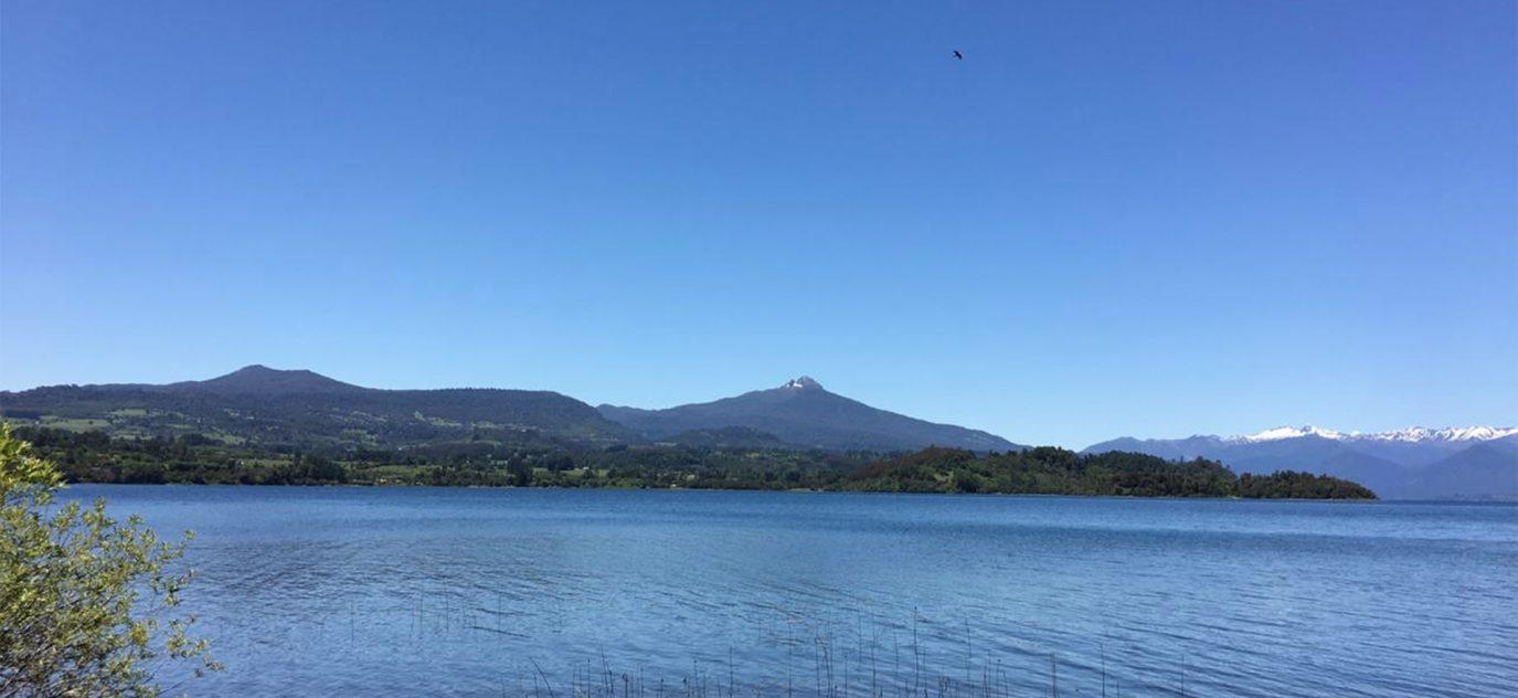 Campo con orilla de lago