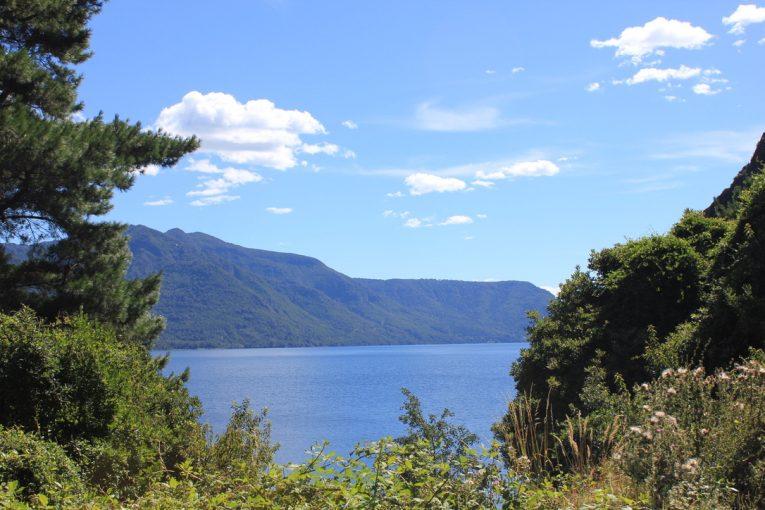 Vista al lago desde el terreno